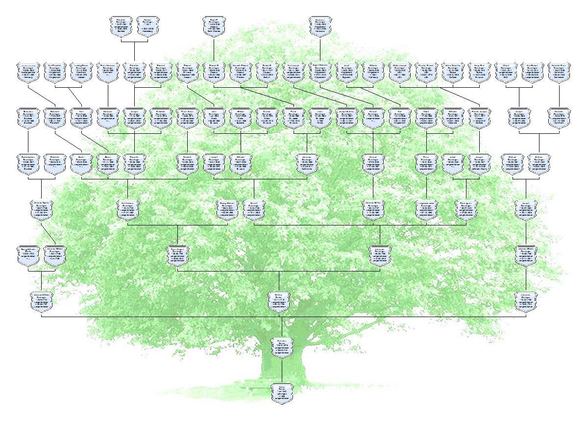 Stammbaum-1-klein